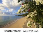 gorgeous floral bushes by the... | Shutterstock . vector #633245261