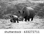 just a baby rhino and his mom | Shutterstock . vector #633272711