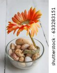 Small photo of African daisy or gerbera in glass on white wood background
