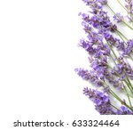 sprigs of lavender isolated on... | Shutterstock . vector #633324464