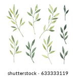hand drawn watercolor... | Shutterstock . vector #633333119