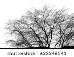 realistic tree silhouette ... | Shutterstock . vector #633346541