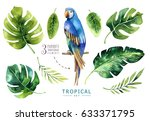 hand drawn watercolor tropical... | Shutterstock . vector #633371795
