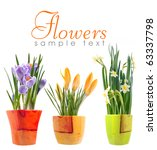 flower | Shutterstock . vector #63337798