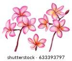 watercolor set of plumeria... | Shutterstock . vector #633393797