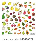 exotic tropical fruits hand... | Shutterstock .eps vector #633416027