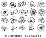 flower set | Shutterstock . vector #633431555