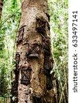 Kambira Baby Graves Tree....