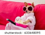 chihuahua dog watching tv or a... | Shutterstock . vector #633648095