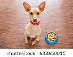 hungry  chihuahua dog behind... | Shutterstock . vector #633650015