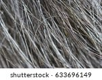 Small photo of Macro texture of wool black wild Altaic yak