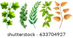 leaf and branch set on white | Shutterstock .eps vector #633704927