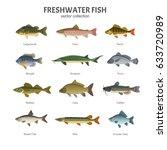 freshwater fish set. vector... | Shutterstock .eps vector #633720989