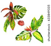 tropical hawaii leaves palm... | Shutterstock . vector #633849335