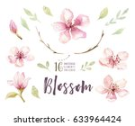 watercolor boho blossom flower... | Shutterstock . vector #633964424