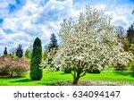 spring garden blooming... | Shutterstock . vector #634094147