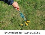 gardener manually removes weeds ... | Shutterstock . vector #634102151