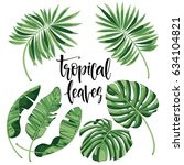 tropical leaves collection on... | Shutterstock .eps vector #634104821