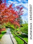 autumn tree at autumn park trail | Shutterstock . vector #634105007