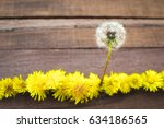 Small photo of Single-minded dandelion bloomed early and took the lead in