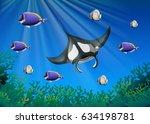 Stingray And Many Fish Under...