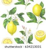 seamless lemon pattern on white ...   Shutterstock . vector #634213031
