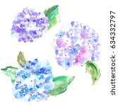 watercolor hydrangeas in purple ... | Shutterstock . vector #634332797