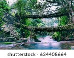 living root bridges of... | Shutterstock . vector #634408664