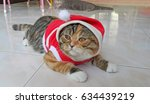 cat santa  wonderful scottish... | Shutterstock . vector #634439219