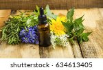 herbal essential oil skincare... | Shutterstock . vector #634613405