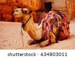 smile camel  | Shutterstock . vector #634803011