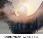 Double Exposure Abstract Art...