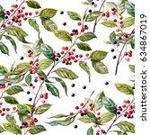 elderberry. medicinal plant of...   Shutterstock . vector #634867019