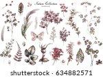 big set watercolor elements  ...   Shutterstock . vector #634882571