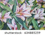 flowers lilies.illustration... | Shutterstock . vector #634885259