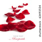 Stock photo beautiful rose petals isolated on white for your design 63493534