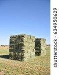 Small photo of Arizona alfalfa bales
