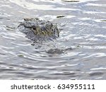 Small photo of Florida airboat trip, among everglades, alligator near the boat