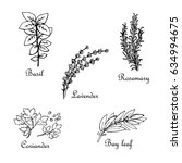 set of hand drawn spices  basil ... | Shutterstock .eps vector #634994675