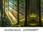 dark forest sunlight landscape | Shutterstock . vector #635000897