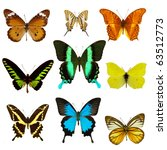 Stock photo exotic butterfly collection 63512773