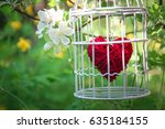 heart inside the bird cage at... | Shutterstock . vector #635184155