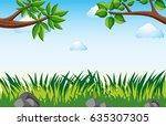 scene with grass in garden... | Shutterstock .eps vector #635307305