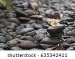 plumeria  flower with stones | Shutterstock . vector #635342411