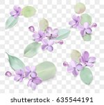 soft pastel color floral group... | Shutterstock .eps vector #635544191