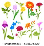 Stock vector beautiful watercolor flower set handmade style illustration isolated on white 635605229