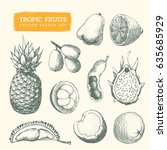 hand drawn fruit sketches. cool ... | Shutterstock .eps vector #635685929