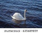 a beautiful portrait of an... | Shutterstock . vector #635689859
