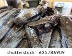 black scabbardfish  cutlassfish ... | Shutterstock . vector #635786909