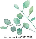 watercolor vector silver dollar ...   Shutterstock .eps vector #635793767